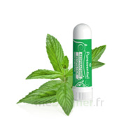 PURESSENTIEL RESPIRATOIRE Inhalation nasal 19 huiles essentielles à Paris
